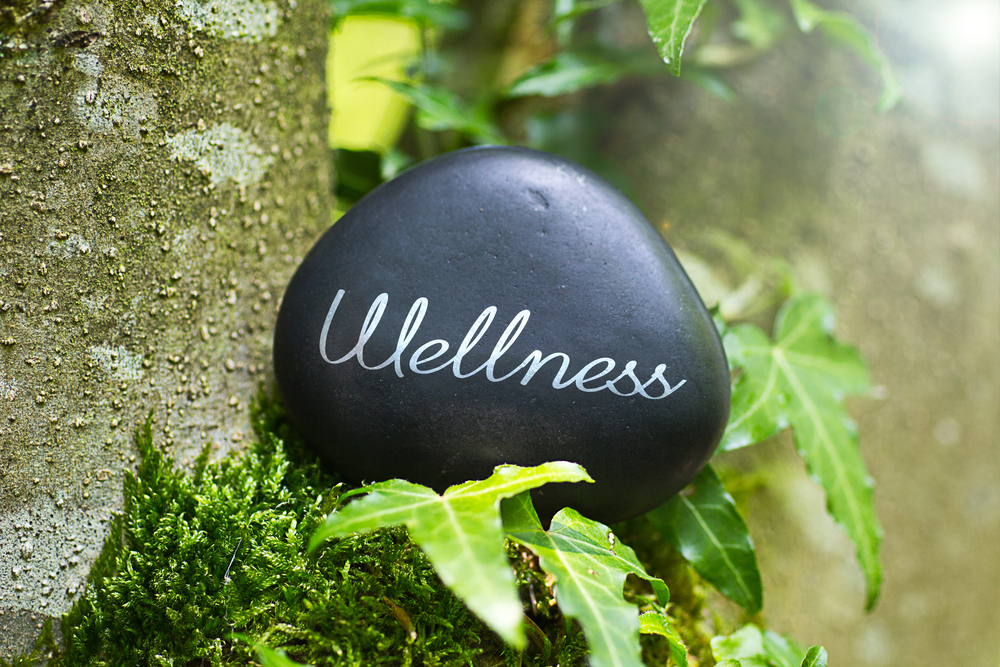 wellness outside zen